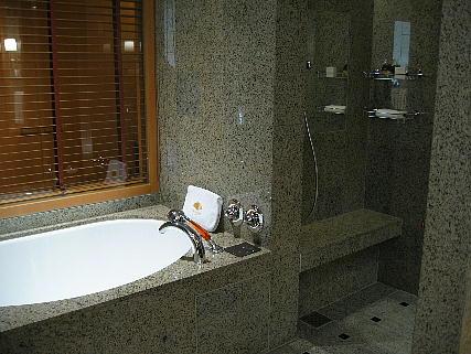 05_22_bathroom.jpg